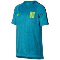Tričko Nike Neymar B NK Dry SQD Top SS GX Junior - 859880-437
