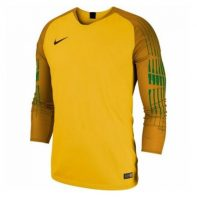 Dres Nike NK gardinien II GK JSY LS M 898043-719