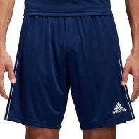 Kraťasy Adidas CORE 18 TR Short M - CV3995