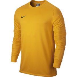 Brankársky dres Nike Park Goalie II LS M - 588418-739