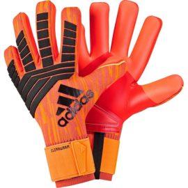 Brankárske rukavice Adidas Predator CW - CW5585