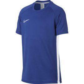 Nike-AO0739-480