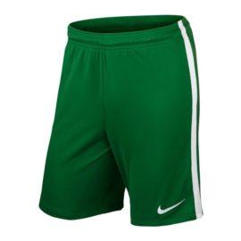 Nike-725990-302